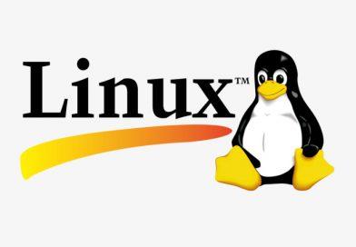 임베디드 리눅스 프로그래머의 처우, 전망은 어떨까?