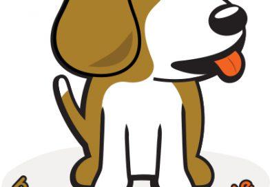 [Review] 비글 본 블랙(BeagleBone Black) 구입 후 개봉기